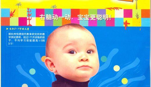 右脑训练营手册指南 儿童智力开发 宝妈育儿必备 百度云盘免费下载