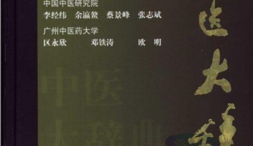 中医大辞典(第二版) 李经纬主编 母婴护理必看书籍 宝妈育儿必备书籍 百度云盘下载